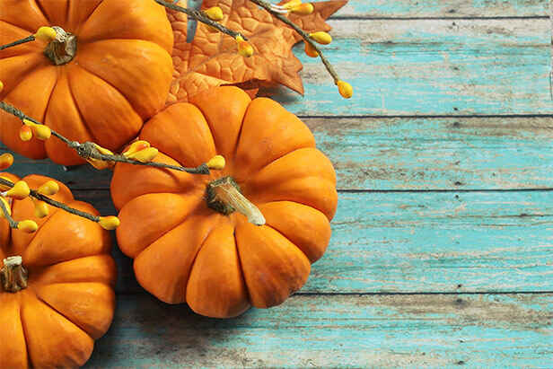 Trending Now: Pumpkin